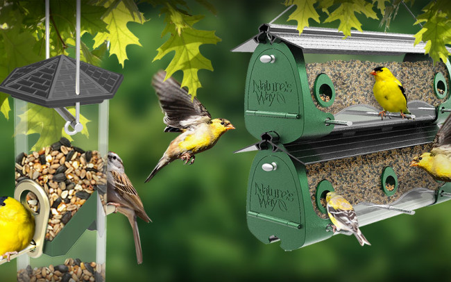 Natures Way Bird Feeder